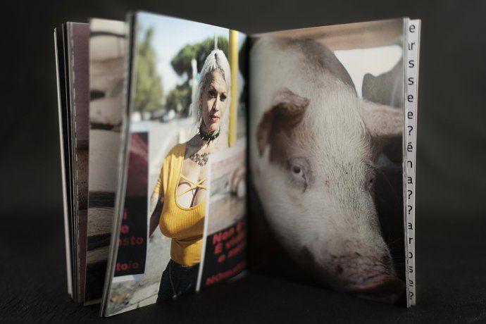 Es fotógrafa y retrata a los animales que ingresan al matadero: La cámara me impermeabiliza del dolor que puedo sentir