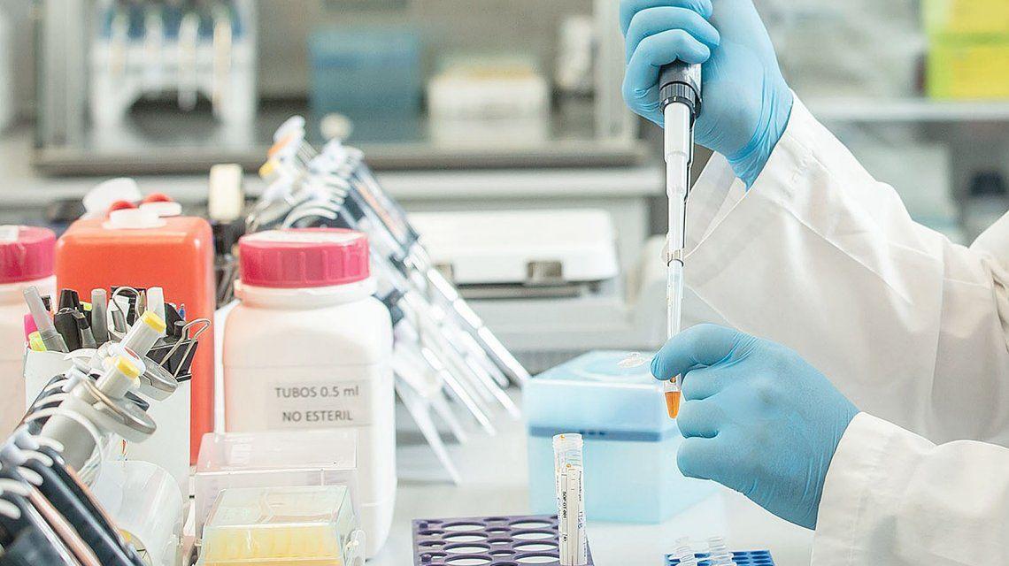 Coronavirus: en qué casos se podrá utilizar el suero equino y el plasma